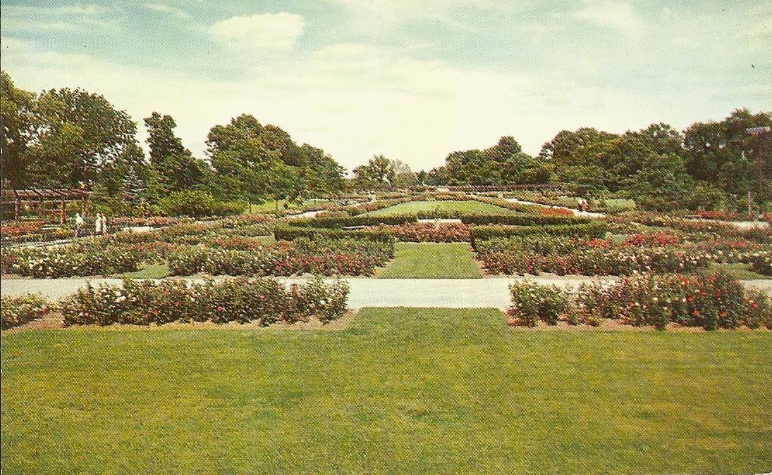 Vintage Travel Postcards Park Of Roses Columbus Ohio