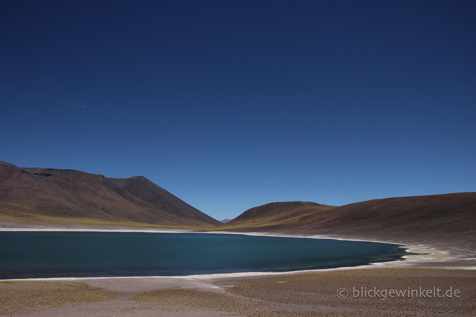 Lagune Miscanti de Atacama