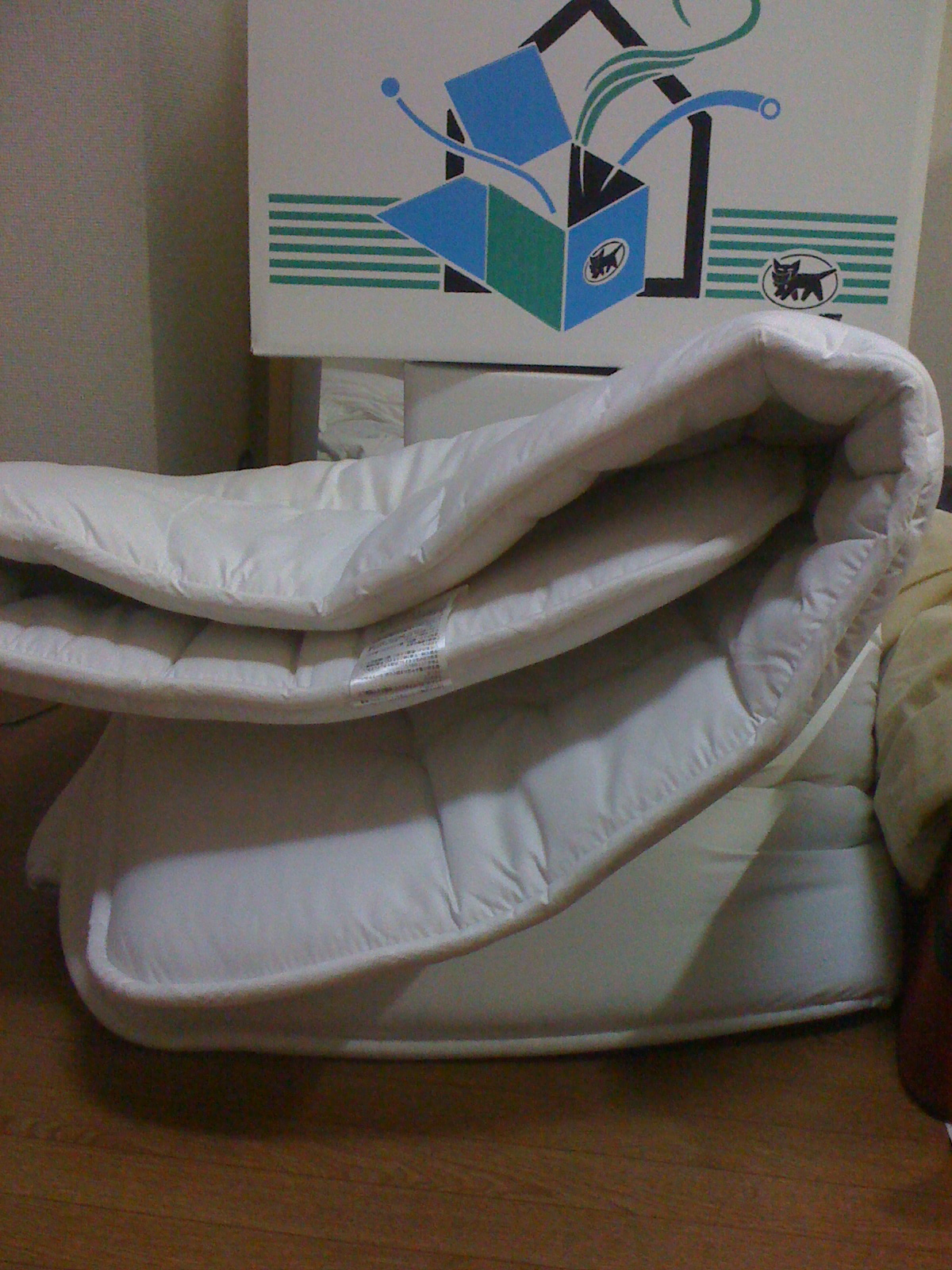 lost in translation japanese futon