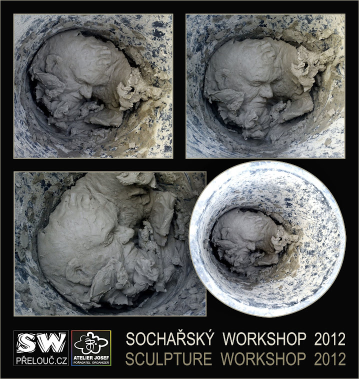 SOCHAŘSKÝ WORKSHOP 2012
