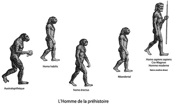 L'Hôtellerie Pour Les Nuls...: Là Où Tout à Commencé, LA PRÉHISTOIRE