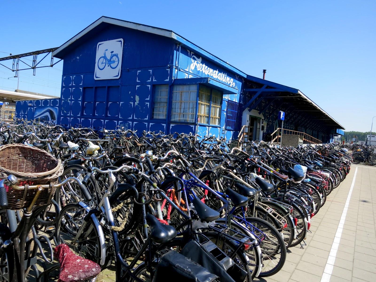 ... オランダと聞くと自転車となる