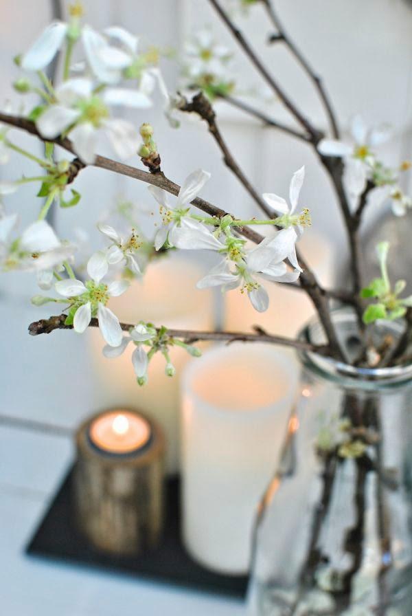 äppelkvist i blom led ljus hannas