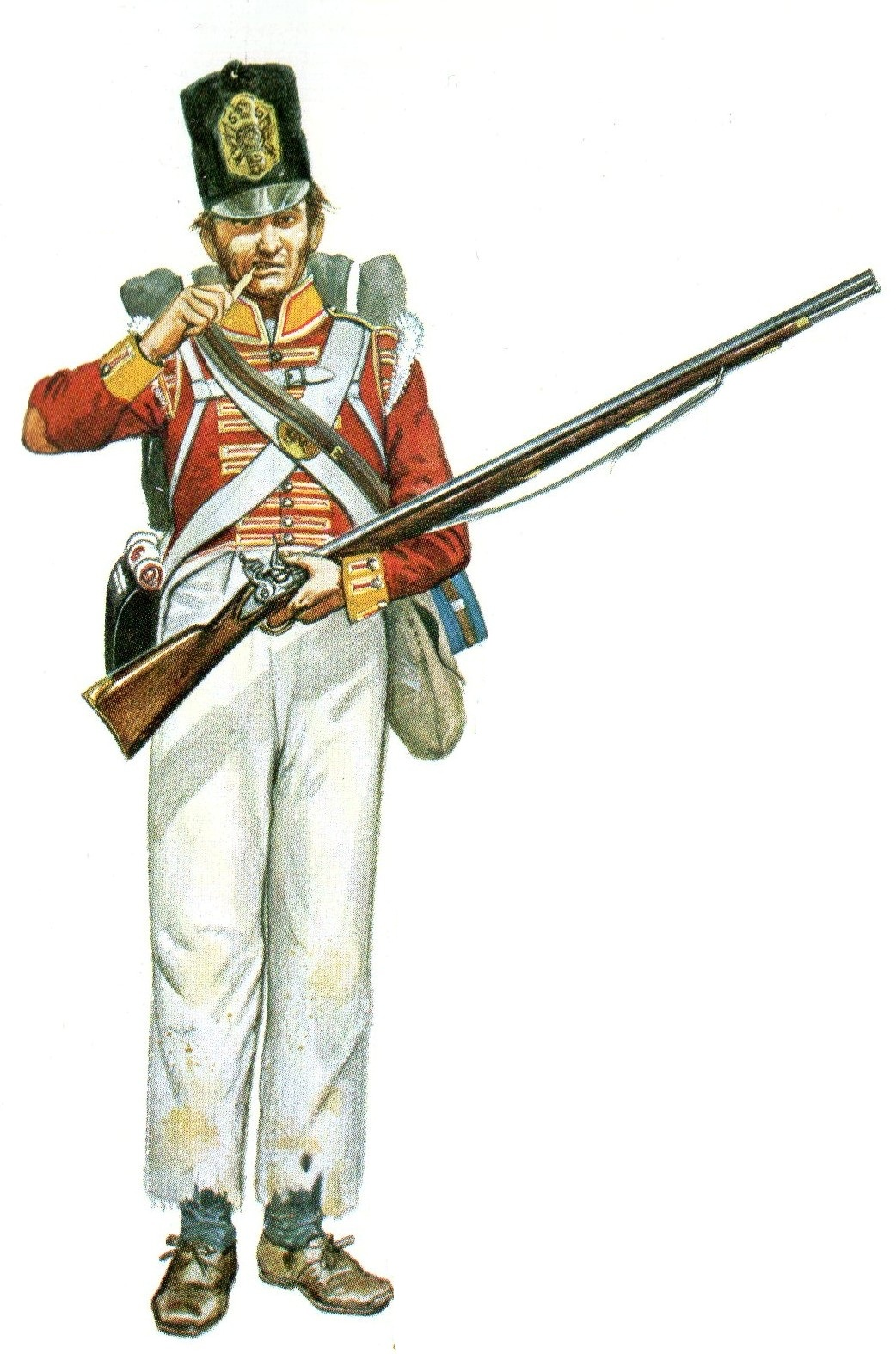peninsular war Peninsular war: peninsular war, (1808–14), that part of the napoleonic wars fought in the iberian peninsula, where the french were opposed by.