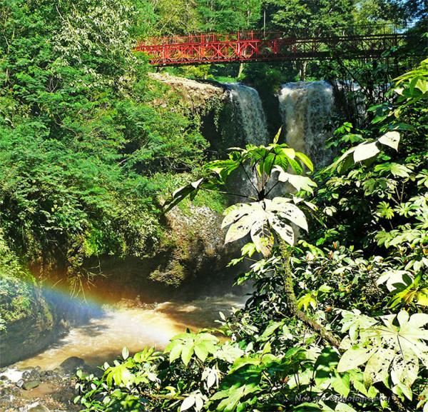 Suguhan alam yg indah & menyegarkan di Taman Wisata Alam Maribaya Bandung