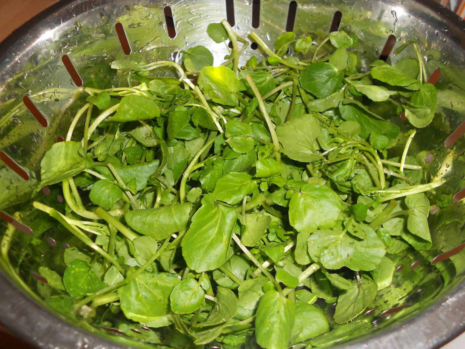 Кресс салат рецепт