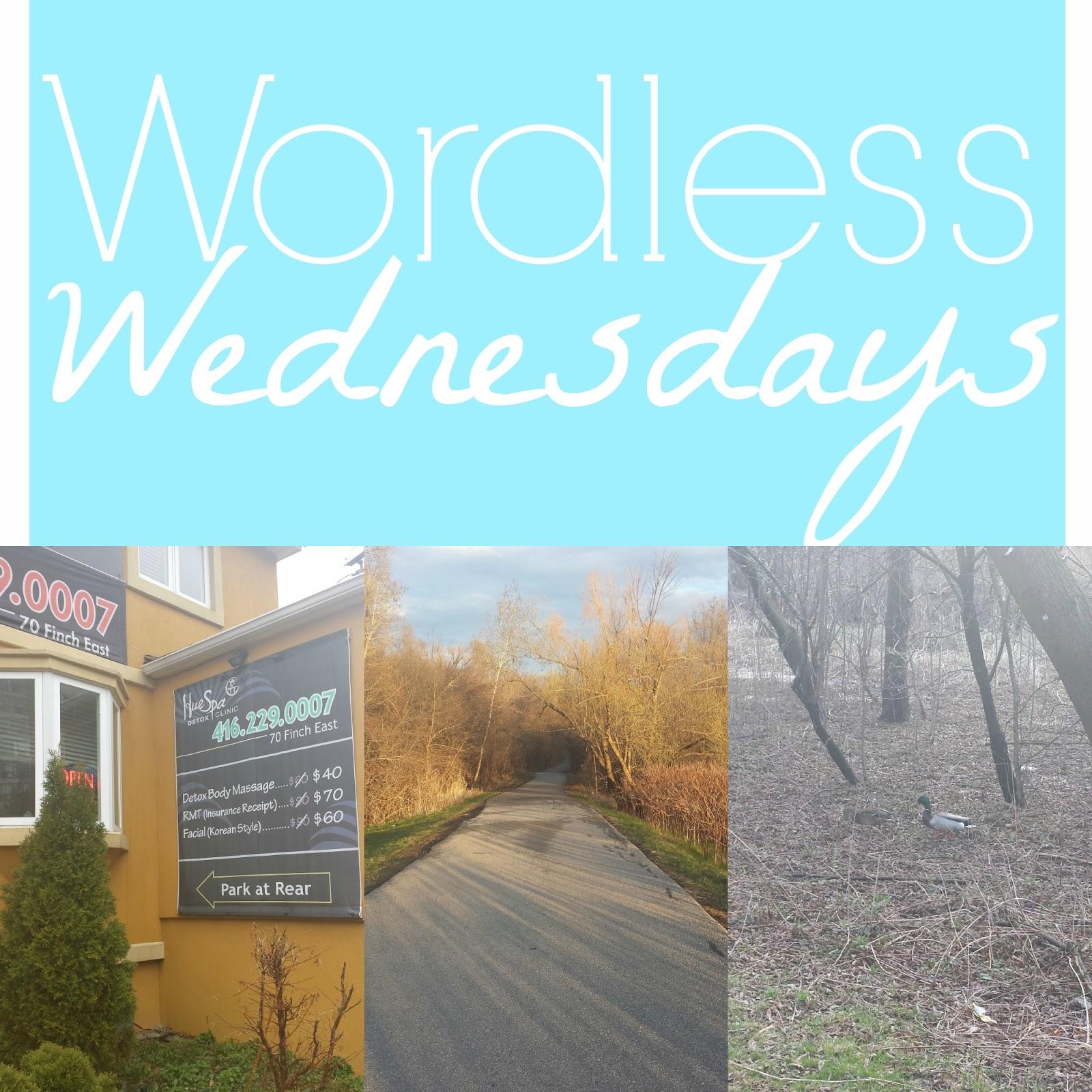 wordless wednesday photography