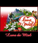 """Miel """"LUNA DE MIEL"""