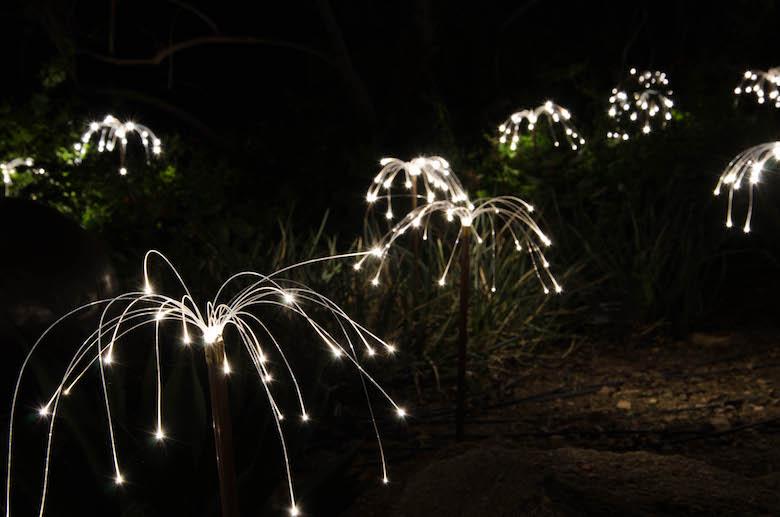 Bruce Munro, Sonoran Light, Desert Botanical Gardens, Fireflies