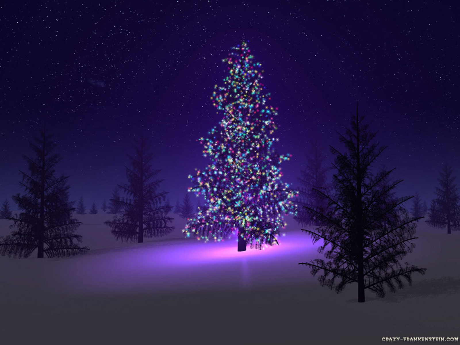 Wallpaper backgrounds beautiful christmas trees for Pretty christmas pics