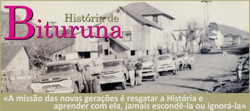 História de Bituruna