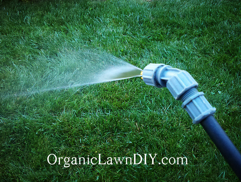 Watering grass seed with a pump spayer