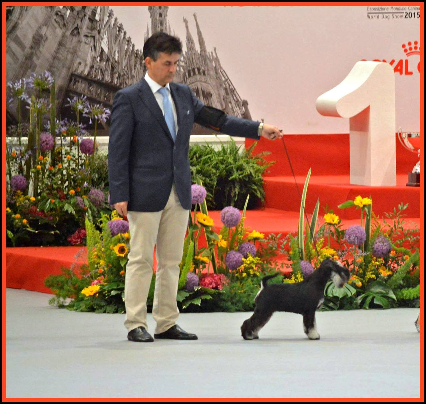 Puppy WORLD WINNER Milán '15