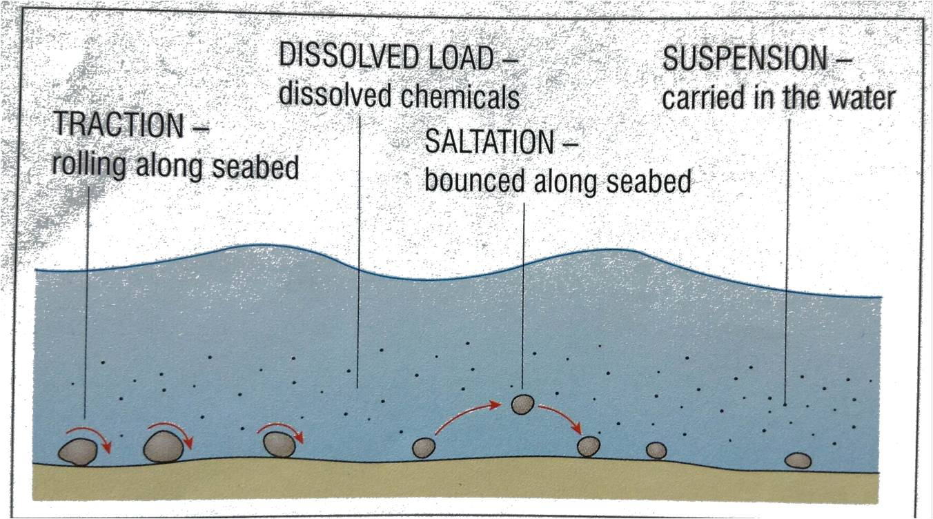 The coast 2013 diagram showing how sediments are transported pooptronica
