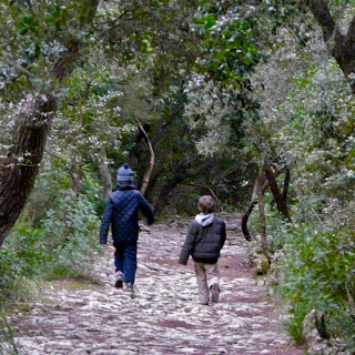 Niños caminan por el bosque. Excursión Esporles - Banyalbufar. Sierra de Tramuntana. Malllorca