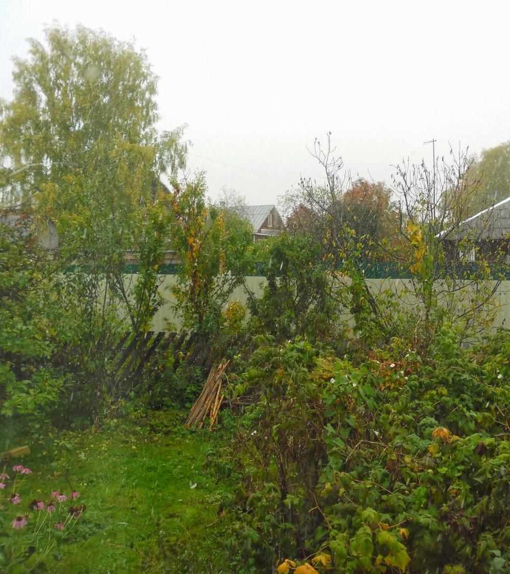 Осень. Первый снег