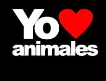 AMO A LOS ANIMALES