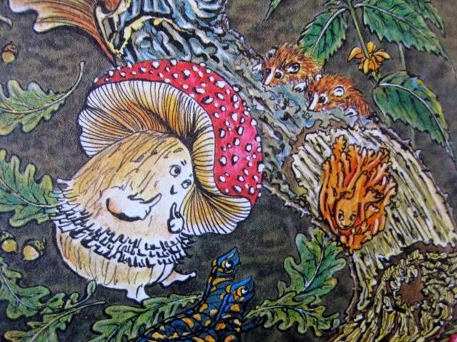 Illustration Anton, der Fliegenpilz