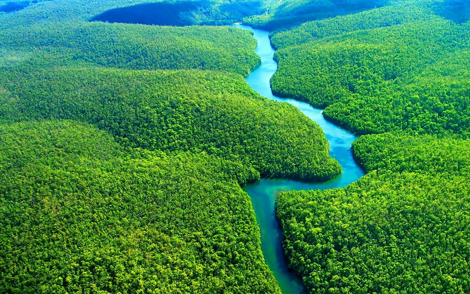 Amazon rainforest hd wallpaper eon wallpapers - Amazon wallpaper hd ...