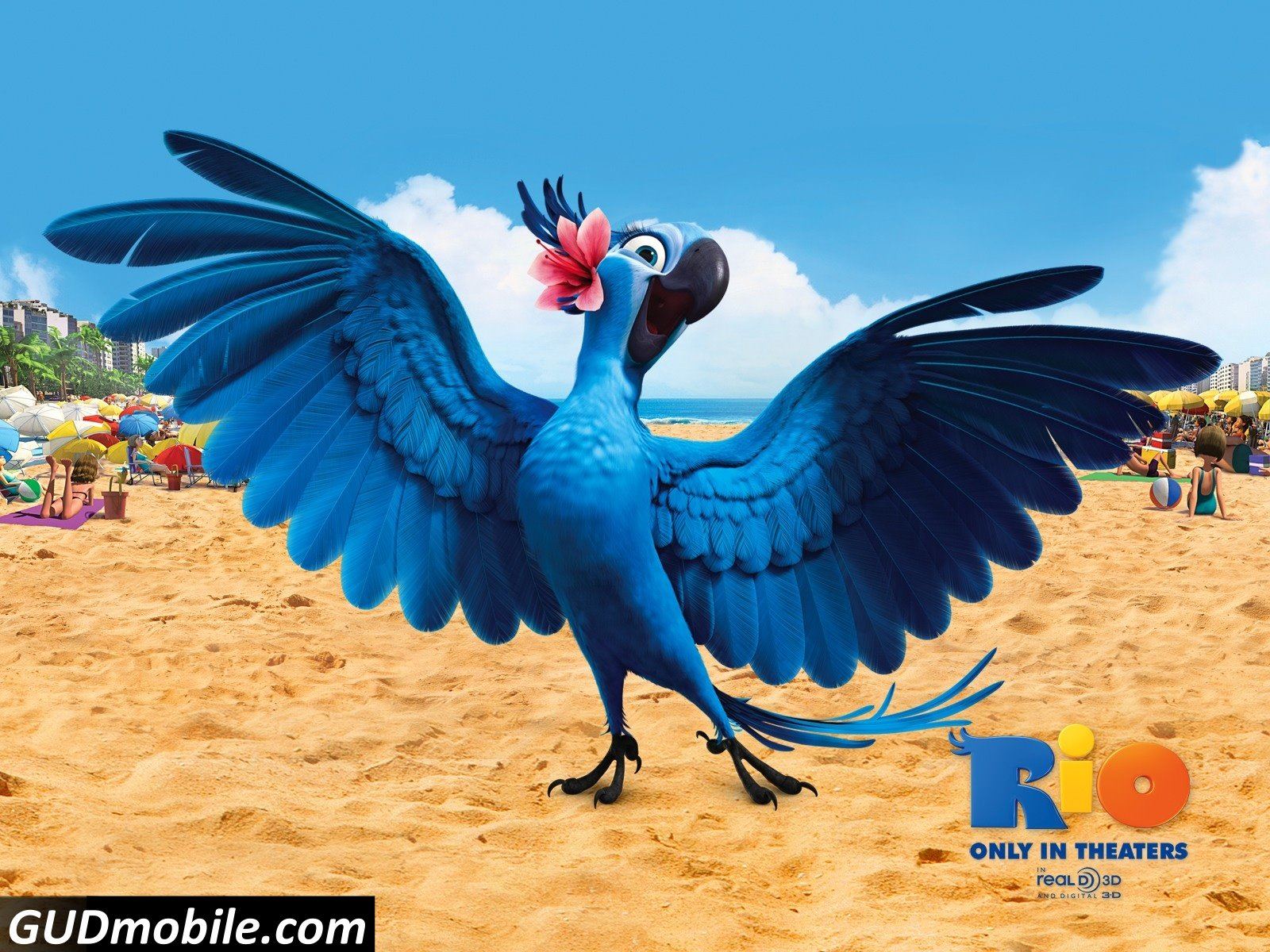rio movie wallpaper hd | high resolution wallpapers and pictures