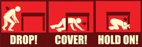 drop cover hold strategy earthquake tip