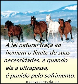 LEI NATURAL DA VIDA