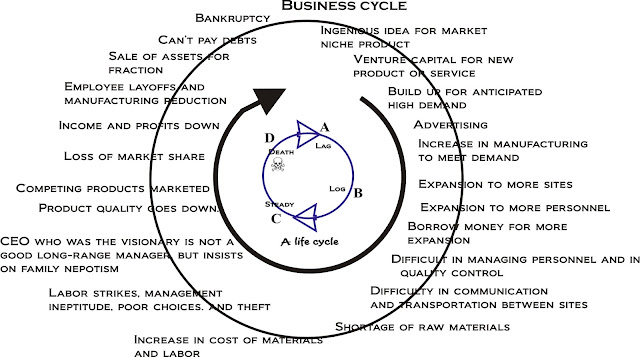 Everything i know i learned from a bacterial colony hypothetical business life cycle of a company ccuart Images