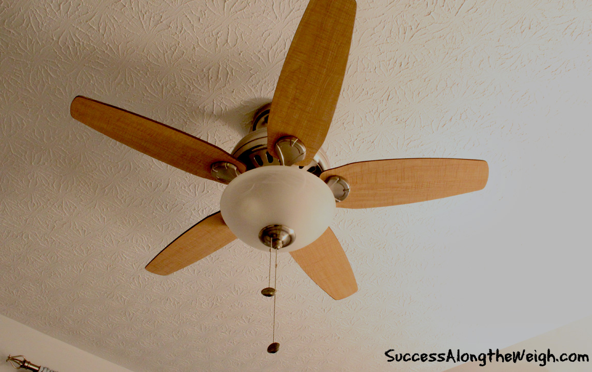 DIY Project: Repainting Ceiling Fan Blades