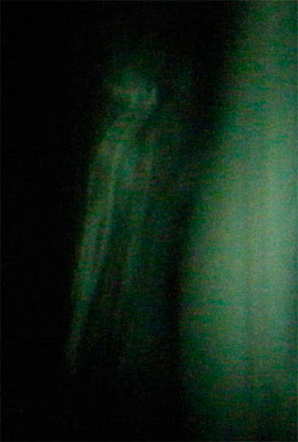 Real Ghost Photo: Wickland House Ghost