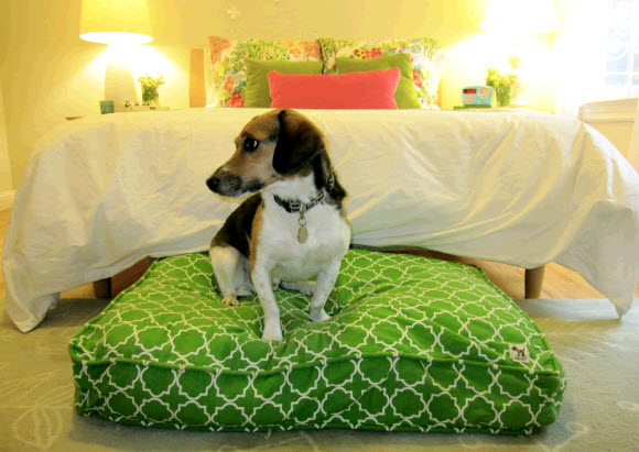 """eye heart: """"upcycle"""" with molly mutt dog bed duvet company!"""