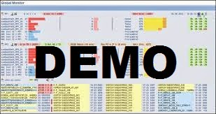 Access the DEMO SAP System