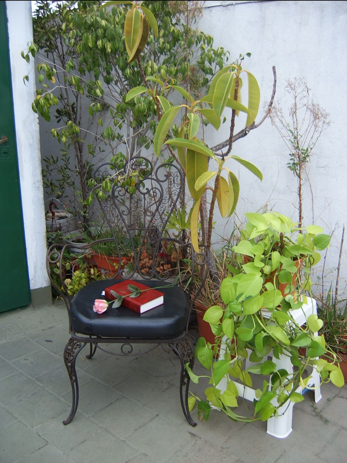 The existence of our natural environment merry for Terrace garden meaning