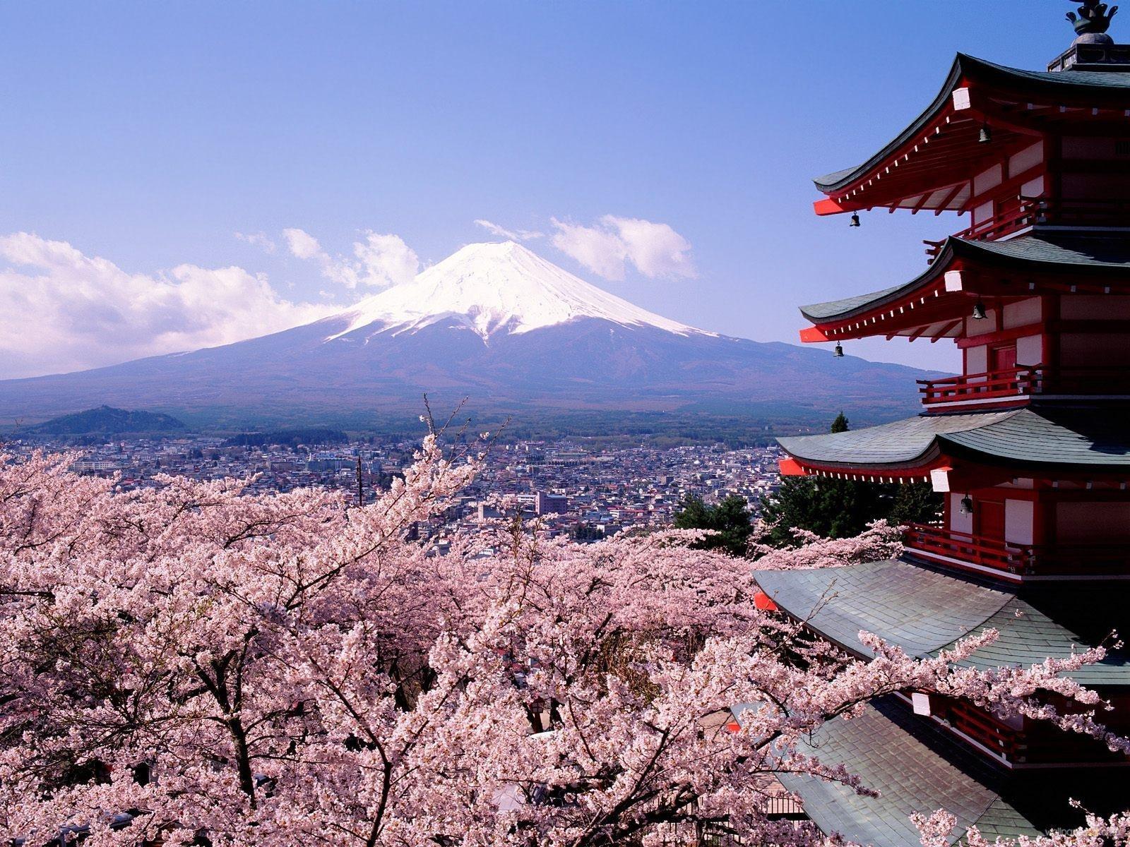 tokyo-in-blossom.jpg