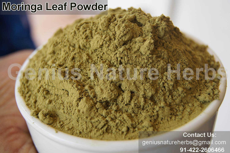 how to prepare moringa powder