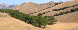 Maguire Peaks, Sunol Park