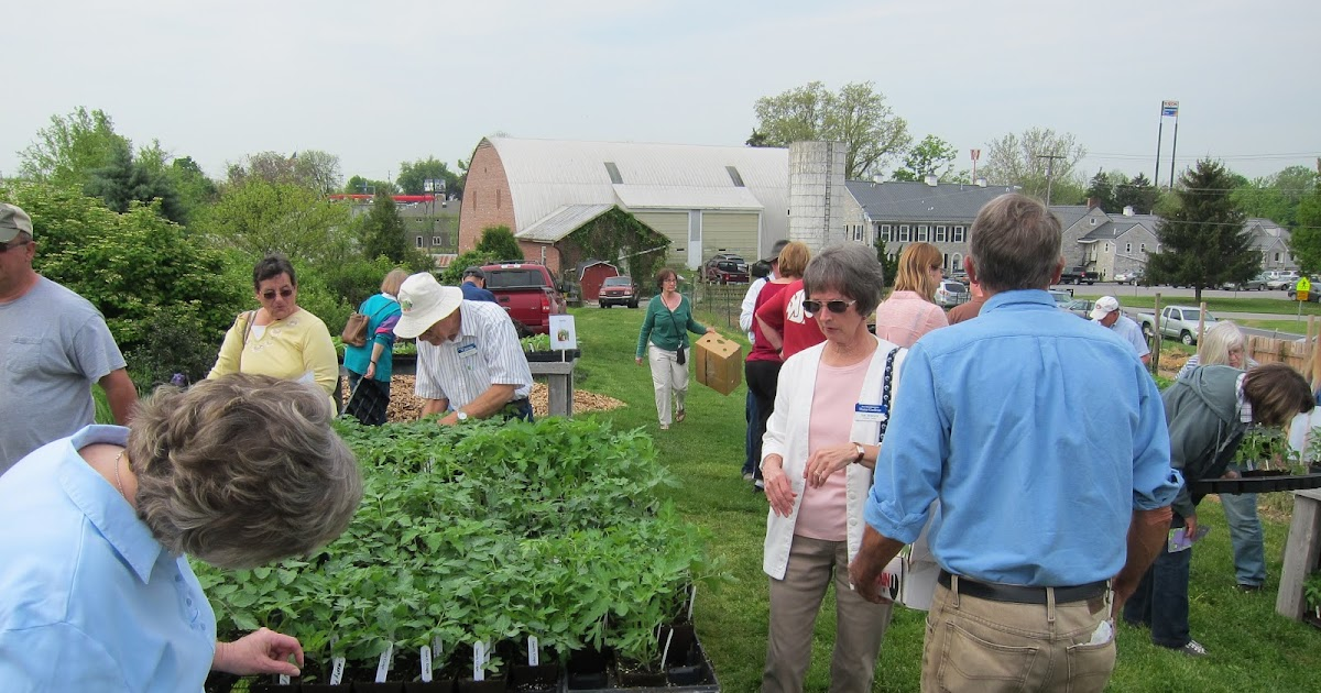 Franklin County Pa Gardeners Vegetable Plant Sale On 5 10