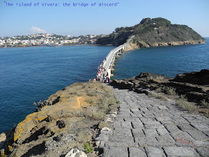"""The island of Vivara: the bridge of discord"""