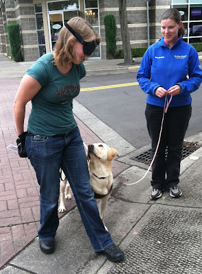 Up curb stop for Miranda and yellow Lab guide as instructor looks on
