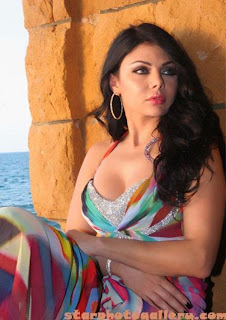 haifa wehbe after plastic surgery