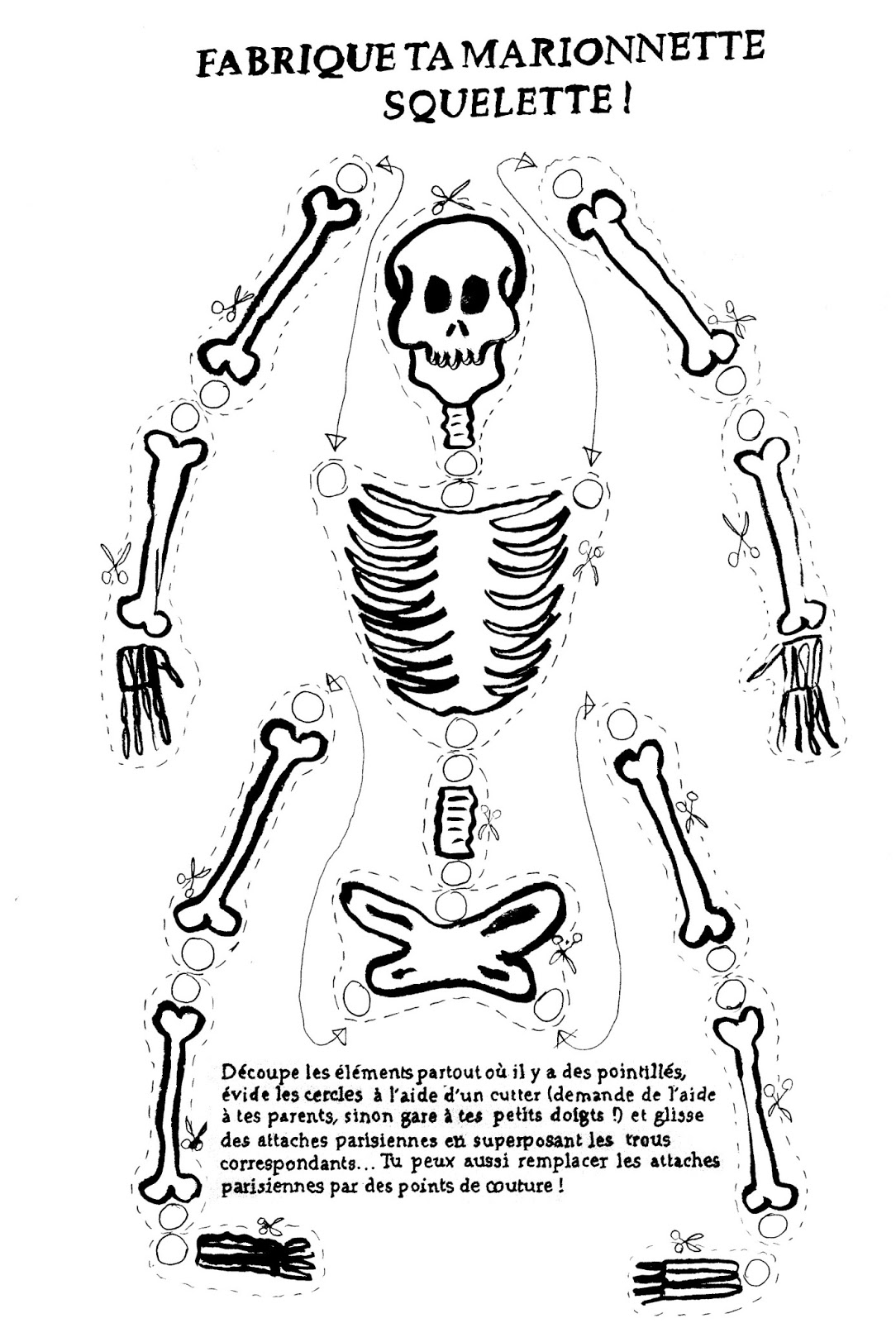 Suite - Dessin de squelette ...