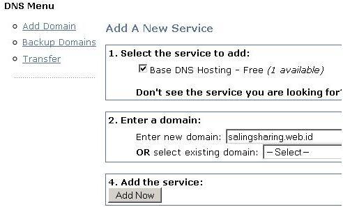 add domain dns park