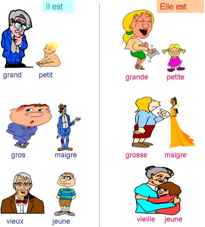 Adjectif Reconnaitre L Adjectif Exercices Adjectif Fiches