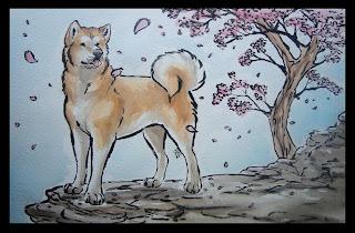 Akita Wallpaper