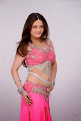 Sneha Ullal Glamorous in Pink Photo shoot-thumbnail-9