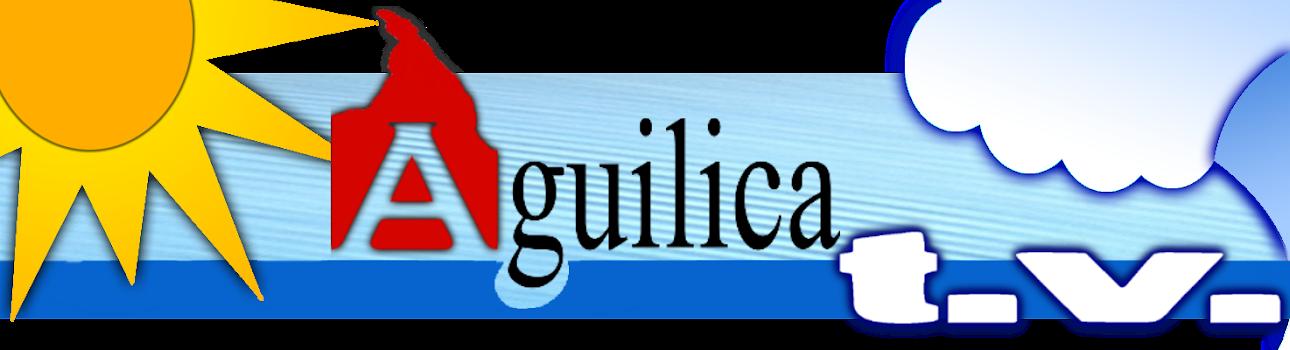 AGUILICA T.V.