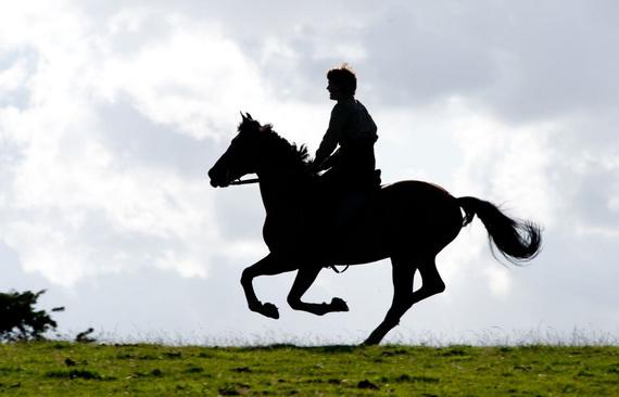 War Horse, Photograph