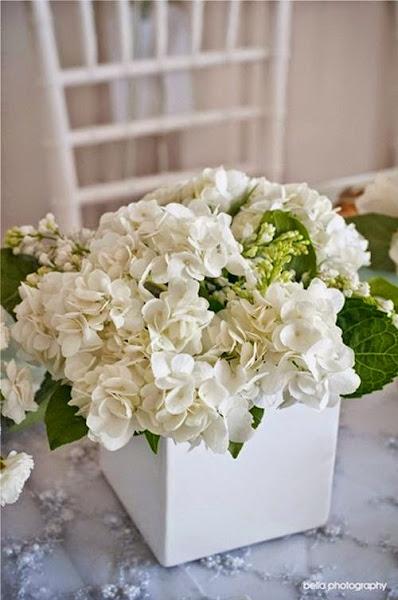 Chill decoraci n plantas de interior y otras decorar - Decoracion con hortensias ...