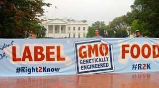 GMO Labeling Bill Voted Down In Senate - Label GMO (Genetically Engineered) Food - Right to Know What YOU Eat and Drink