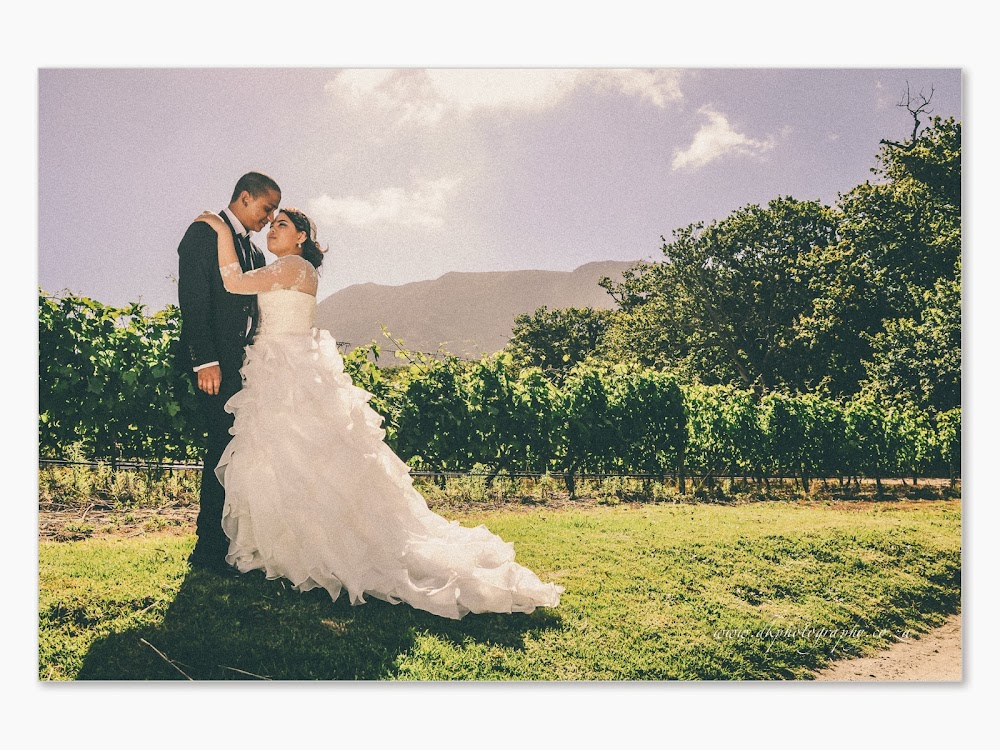 DK Photography Lameez+Slide-244 Lameez & Muneeb's Wedding in Groot Constantia and Llandudno Beach  Cape Town Wedding photographer