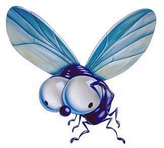 Pulg n remedios naturales pulgones y moscas - Remedio contra las moscas ...